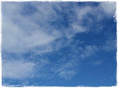 見上げればこんなに広い空がある_c0026824_1717502.jpg