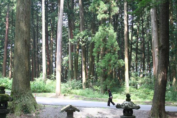 富士山の麓の思い出        中江 美有紀_c0098759_026622.jpg