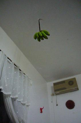 bananas._c0153966_22415119.jpg