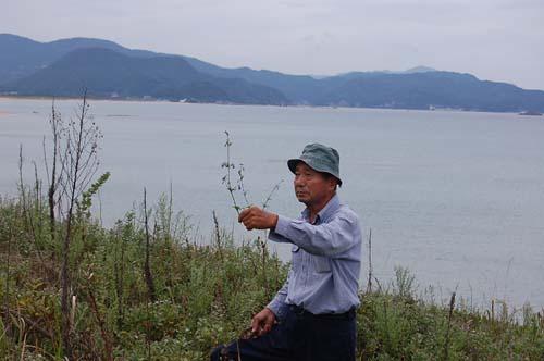 恒例の秋の『植物観察会』開催。_c0117574_16293810.jpg