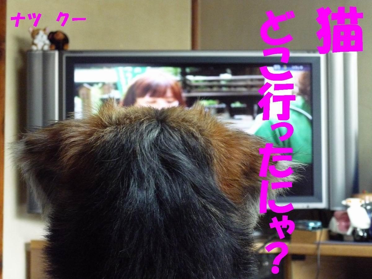 b0140680_21505041.jpg
