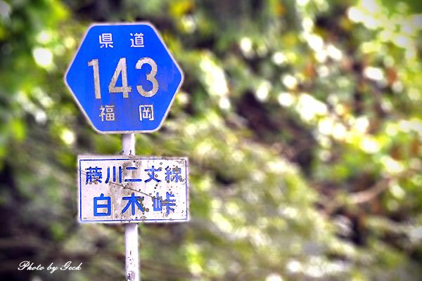 七福街道 マイナスイオンをあびに - その5 白木峠 ~★_d0147591_1550557.jpg