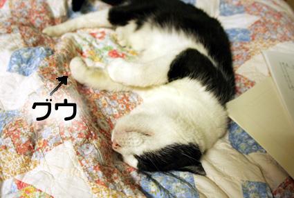 愛桃ころがし♪_d0071596_22493793.jpg