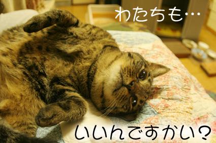 愛桃ころがし♪_d0071596_22534483.jpg