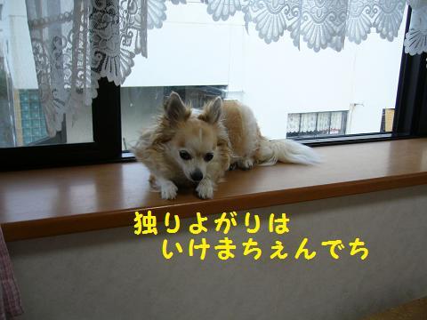 b0138430_19563172.jpg