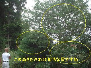 f0031037_19105127.jpg