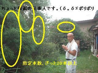 f0031037_1911577.jpg