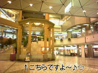 f0114938_955256.jpg
