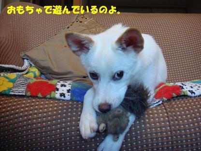 f0046854_20134358.jpg
