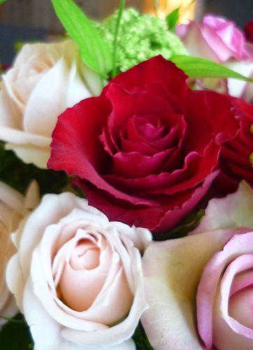 ガトー・ショコラ・ナンシー♪  台風の夜もMini Maria\'s Tea Cup の小さな微笑み**。。。 *。:☆.。† _a0053662_9594666.jpg