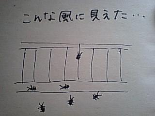 a0082766_13505950.jpg
