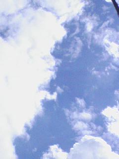 f0146779_1361616.jpg