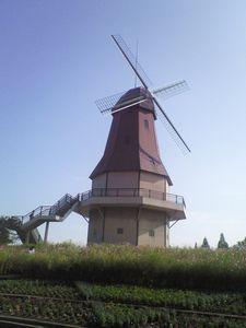 水郷公園_e0143294_15505680.jpg