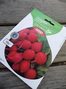 二十日大根の種を蒔きました_f0106597_20562943.jpg