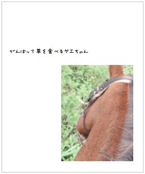 b0120001_21263334.jpg