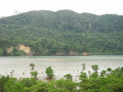 沖縄アルバム(8)西表島の川と滝_d0116009_1413937.jpg