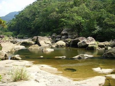 沖縄アルバム(8)西表島の川と滝_d0116009_2232083.jpg