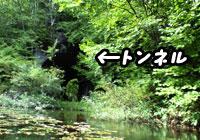 f0129214_124933.jpg