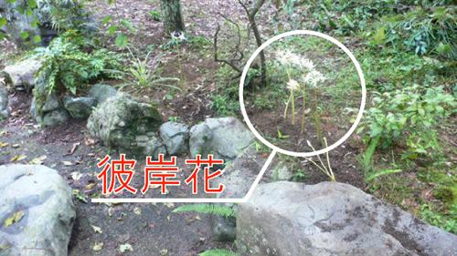 f0060424_23381240.jpg