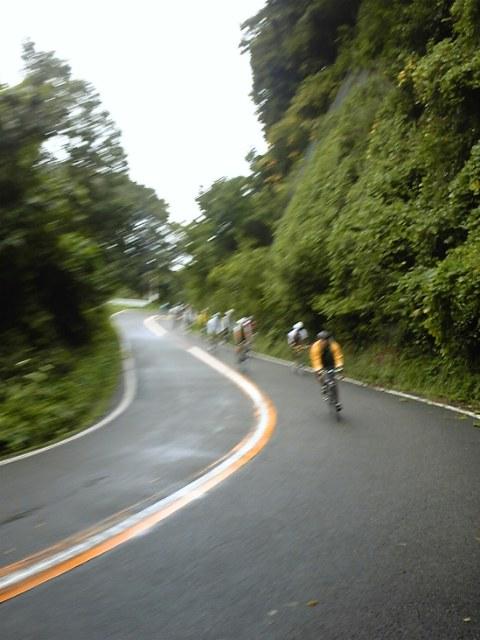 2008弥彦山ヒルクライム_c0170940_1483288.jpg