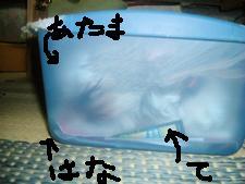 d0140668_846213.jpg