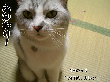d0065398_20125112.jpg