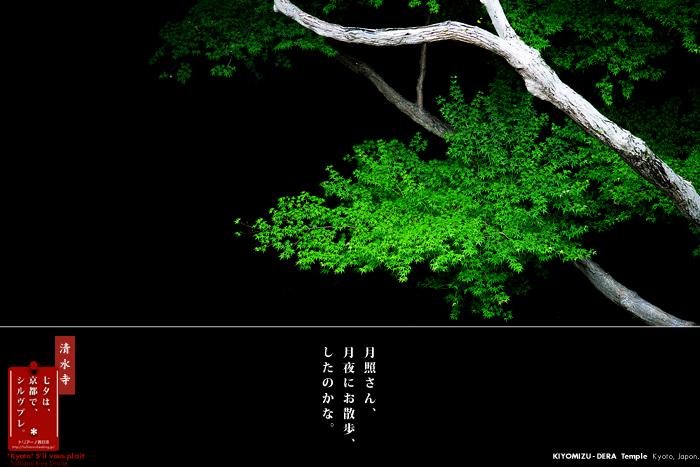 f0038408_8242062.jpg