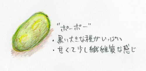 ポーポーだって果物である?_a0097735_20515038.jpg
