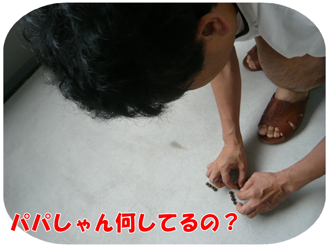 c0151439_8115914.jpg
