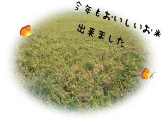 b0149071_16493639.jpg