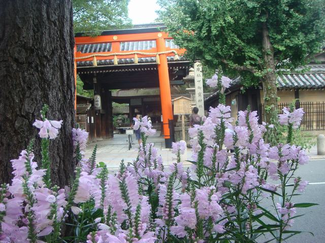 寺町通りは良いとこ、_d0100880_1594683.jpg