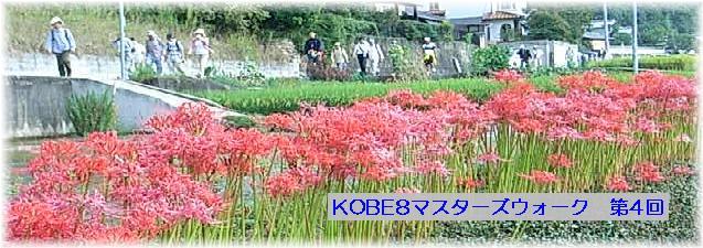 b0036638_18172986.jpg