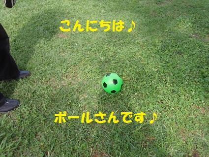 c0151866_21503991.jpg