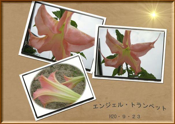 f0047071_15462312.jpg