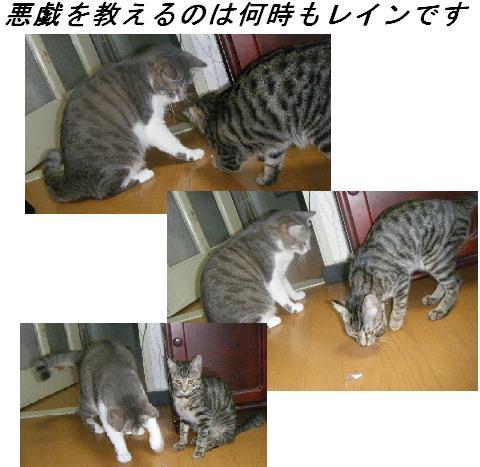 b0112380_1953973.jpg
