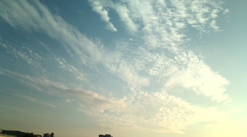 秋空_f0144003_22242111.jpg