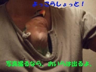 c0133013_11574014.jpg