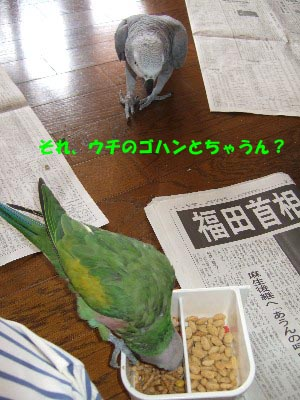 c0133013_13255844.jpg