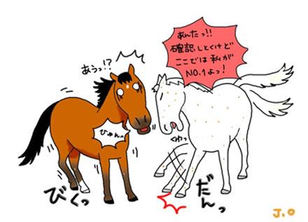「おがわじゅりの馬房」のおがわじゅりさん登場!_c0039735_11291062.jpg