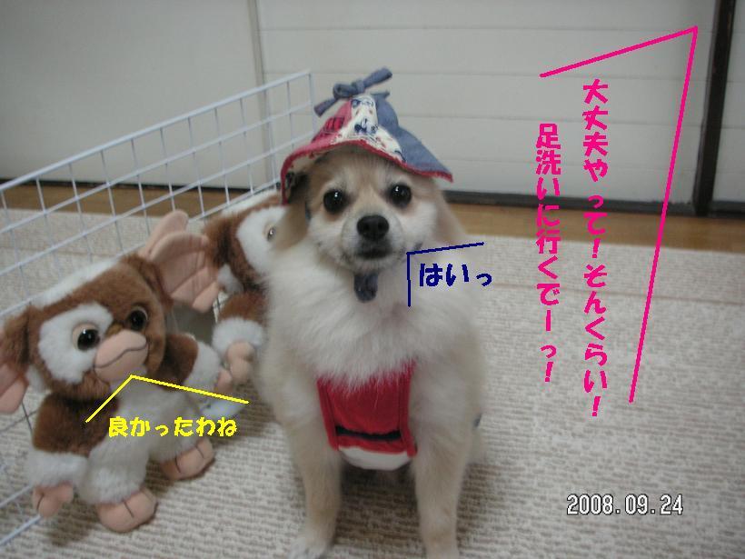 c0179136_1841574.jpg