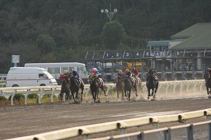 2008年9月21日(日) 高知競馬 8R_a0077663_1840317.jpg