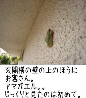 f0187974_22122857.jpg