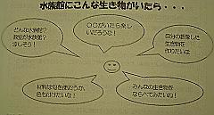 c0052304_19102763.jpg