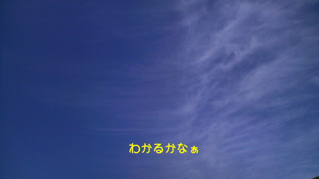 a0009809_17472073.jpg