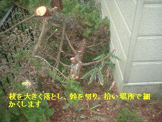 f0031037_22251425.jpg