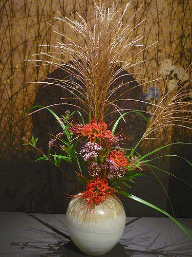大分国体 2008  & 彼岸花 咲いて 秋ですね。。。☆。。.♡*†_a0053662_1824137.jpg