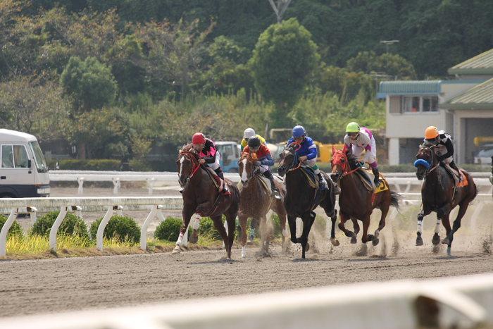 2008年9月14日(日) 高知競馬 4R_a0077663_18191817.jpg
