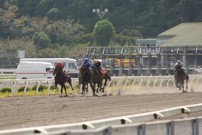 2008年9月14日(日) 高知競馬 4R_a0077663_18193353.jpg