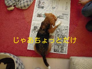 b0104420_0151820.jpg