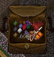 鞄の中_e0089320_1339470.jpg